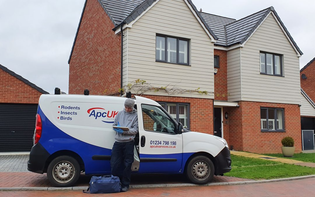 Who is the Best Pest Control Company In Bedford, Bedfordshire?
