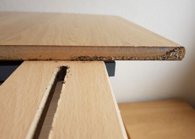 Bed Bugs on a headboard