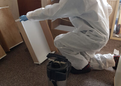 Carrying out a Bed Bug Treatment